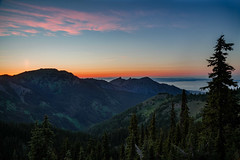 Hurricane Ridge Sunset (NW Vagabond) Tags: park trees sunset mountains landscape washington national olympic hurricaneridge 2015