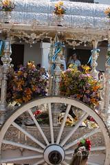 AE5D0820 (alonsoesparterofoto) Tags: caballo alma imagenes alonso rocio ermita bombo flamenca buey flauta gitana romeria campero botos tamboril bueyes rociero carriola simpecado tamborilero espartero rociera gibraleon sinpecado alonsoespartero