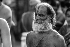 Swami (Paddy Pix) Tags: nikon ngc chennai 70200 psm parthasarathytemple nikond800