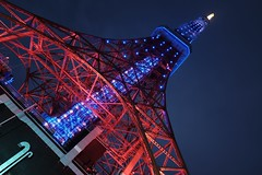 DSCF2670 (Zengame) Tags: light architecture night tokyo fuji illumination landmark x illuminated tokyotower fujifilm 東京 東京タワー xf 夜 xt1 富士フイルム なでしこ xf16mmf14rwr xf16mm