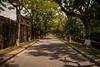 Distance (jev55) Tags: road summer sun hot grass leaves nikon warm pavement path ruin vietnam heat scorch