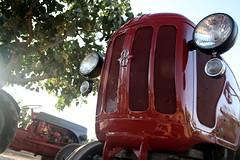 IMG_0392 (ACATCT) Tags: old españa tractor spain traktor agosto toledo antiguo massey pistacho tembleque barreiros 2015 bustards perdices liebres avutardas ff30ds r350s