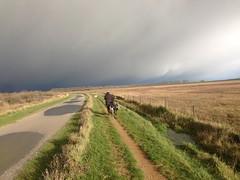 I think I'll go back. (Crazy Rudie) Tags: landscape landschap lopen walking fiets bike netherlands nederland goereeoverflakkee zuidholland slikkenvanflakkee gors road weg hond vrouw women weather weer grijs grey slecht bad regen rain