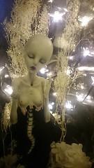 Gloria Stella (DarklighterDolls) Tags: bjd dz dollzone star light legit