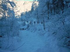 Sentiero del Pellegrino - Lussari 1