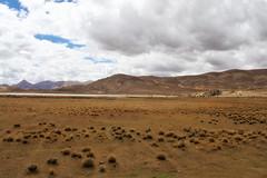 aR_TIBET_110 (Arnaud Rossocelo) Tags: tibet tibetan monk lhassa dalai lama potala stupa monastery temple buddha buddhism statue shigatse lake namtso yamdrok everest