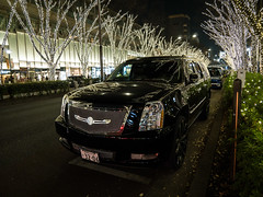 Omotesando Xmas (H.H. Mahal Alysheba) Tags: snapshot tokyo night lumix gx7 wide street omotesando illumination christmas lumixg 1260mmf3556