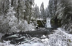 Upper North Falls (Mstraite) Tags: water waterfall winter ice snow cold silver falls state oregon river stream trees forest trail hike tripod slow shutter depth