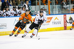 "Missouri Mavericks vs. Quad City Mallards, December 31, 2016, Silverstein Eye Centers Arena, Independence, Missouri.  Photo: John Howe / Howe Creative Photography • <a style=""font-size:0.8em;"" href=""http://www.flickr.com/photos/134016632@N02/32090834295/"" target=""_blank"">View on Flickr</a>"