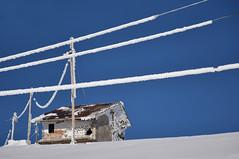 Gelide conversazioni (Maurizio Belisario) Tags: montagna mountain bianco white neve snow campostaffi casa telefono fili phone