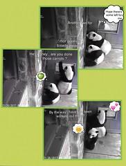 Panda Mei and Bei (pattie7459) Tags: ccncby smithsonianscreenshot nationalzoo panda flirting blushing
