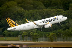 SIN.2015 # TR A320 9V-TRM - awp (CHR / AeroWorldpictures Team) Tags: tigerair airbus a320232 9vtrm cn5805 with 2x iae v2527a5 engines history 01oct2013 first flight reg daxaj 11oct2013 delivered ferried xfwdwcsin tr tgw cabin config y180 apr2014 leased icbc winglet fitted a320 planes aircrafts airplanes planespotting singapore changi sin wsss asian asia takeoff runway rwy airport nikon d300s zoomlenses 70300vr nikkor raw lightroom lr5 awp