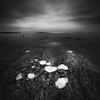 Ice on Rocks (Teemu Oksanen) Tags: blackandwhite monochrome longexposure finland fineart ice baltic sea water