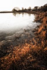 Frozen pond (Stéphane Sélo) Tags: fleursetplantes france hiver pentax pentaxk3ii ain blending coucherdesoleil dombes eau glace gèle ice landscape paysage sunset water étang