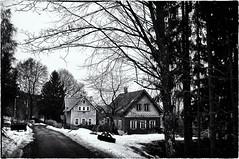 End of winter in Jizerské hory /Isergebirge III (Petr Horak) Tags: x100 tree landscape monochrome normallens road house fuji bw blackandwhite rural village winter snow czechia cze