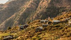 Abandoned Village (the1337est) Tags: village abandoned himalayas himachal trekking triund india landscape prime hut houses beautiful nikon d5200 dharamshala mcleodganj