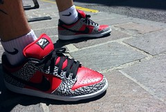 RED SUP (Sneaker Freak) Tags: new york nyc red elephant print logo box low nike sb supreme dunk wdywt