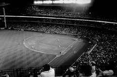 Astros vs. Mariners (crcmuir) Tags: color film edits lightroom