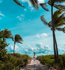 Views of Miami Beach, so do not forget ☺ (The Sergeant AGS (A city guy)) Tags: miamibeach florida unitedstates beachscape coconuttree dunes beautifulpeople walking exploration outdoors tourism