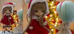 Christmas Wishes (Brie G.) Tags: dals dolls junplanning groove obitsu christmas dalhinaichigo customdal