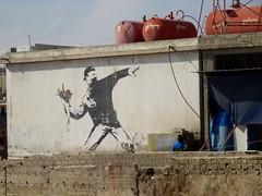 """Banksy art """"Man throwing flowers"""""""