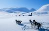 Winter-566 (EbE_inspiration) Tags: nikon nikkor snow lapland sweden winter sledgedogs sledge dogs dog