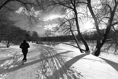 DSCF0991 (Vladimir Glebov) Tags: moscow park winter fujixpro2 xf1024
