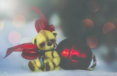 button does not like the holidays (rockinmonique) Tags: buttons tiny toy teddybear macro christmas ornament bokeh moniquew canon canont6s tamron copyright2016moniquewphotography
