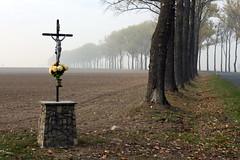 november hues (6) (kexi) Tags: poland polska europe opolszczyzna misty mist cross kapliczka christ catholic religion religious fall autumn field november 2015 canon trees