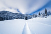 Winter Wonderland (Maximecreative) Tags: select trees sky landscape switzerland winter cold blue clouds house path isolated white snow peaceful longexposure land outdoors atmospheric covered neige hiver chalet vaud wonderland arbres ciel nuages sapins jura