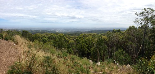 View of Adelaide from Mount Lofty