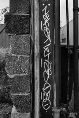 Nekst and Wyse (mike ion) Tags: philadelphia philly pa graffiti nekst wyse d30