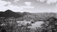 Hanalei_valley_outlook_Scan_2_jan_4_2017 (Silent_Soliloquy) Tags: rb67pros silentsolliloquy scottmcclarin hawaii kauai hanalei valley outlook mamiyarb67 50mmmamiyasekorclens 6x7 medium format travel island