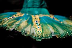 Jeweled Ballet Tutu (tibchris) Tags: ballet tutu jeweled jewel ornate dress costume dance store sanfrancisco