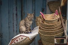 Xauen HD_DSC0023 (ernikon) Tags: xauen chouen chefchouen maroc marroc