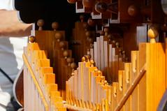 Barrel Organ (liszto) Tags: roses rose lyon ttedor barrelorgan orguedebarbarie lyonroses2015