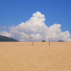 Sulla spiaggia. Corsica (pineider) Tags: beach nature europa boobs euro titts corsica free playa topless spiaggia wildness