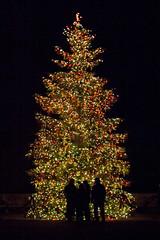 CW351 Longwood Gardens Christmas Lights (listentoreason) Tags: christmas usa holiday night america canon unitedstates pennsylvania scenic favorites places christmastree event ornament christmasornament longwoodgardens ef28135mmf3556isusm holidaylighting score30