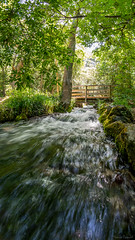 La source de Saint-Pons en été (aups83) Tags: france nature nikon hiver rivière paca provence 8mm extérieur parc forêt panoramique ruisseau samyang saintebaume saintpons d7100 gémenos forêtdautomne valléedesaintpons