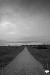 Road (@houdi_) Tags: inverness cullodenbattlefield