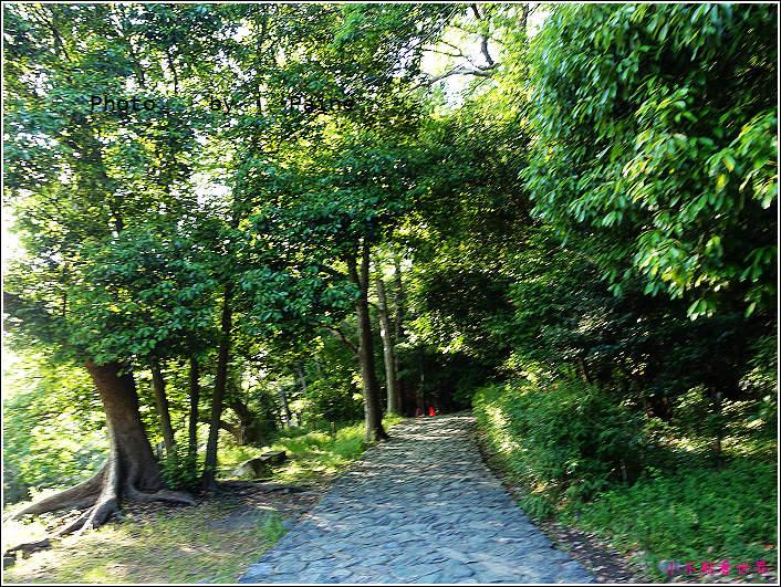 和歌山城 (9).JPG