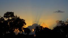 Sunset cloud shadows (Jim Mullhaupt) Tags: pink blue sunset red wallpaper sky orange sun storm color tree rain weather silhouette yellow clouds landscape gold evening nikon flickr sundown wind florida dusk palm exotic p900 tropical coolpix thunder bradenton endofday mullhaupt cloudsstormssunsetssunrises nikoncoolpixp900 coolpixp900 nikonp900 jimmullhaupt