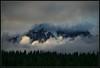 Mountain Light, Extreme (Ernie Misner) Tags: f8andfindthemountain mountrainier mountrainiernationalpark paradise erniemisner washington nikon d800 nik lightroom capturenx2 cnx2
