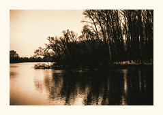 River Rhine (zonevde) Tags: lith digitallith riverrhine