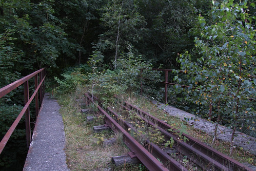 Abandoned narrow-gauge railway bridge, 18.08.2008.