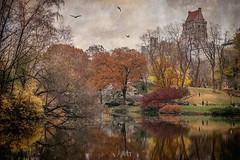 The Pond (JMS2) Tags: centralpark thepond parks manhattan newyork