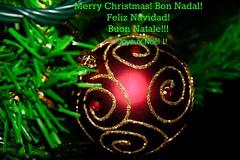 Bon Nadal amics! Feliz Navidad amigos! Merry Christmas my friends! Buon Natale amici!! (Nic lai) Tags: nadal navidad christmas bolas