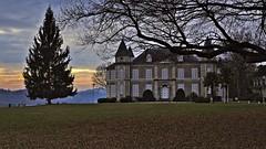 Fin d'après-midi dans le parc du château. (Jacques Borruel) Tags: pau couleurs colors arbres herbe trees bâtiment château castle parc monument coucherdesoleil sunset
