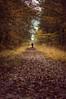 Les chemins de la forêt du Gâvre (dono heneman) Tags: chemin route way voie forêt forest nature végétal vegetal végétation automne autumn feuille leaf arbre tree human humain homme man ciel sky herbe grass legâvre loireatlantique paysdelaloire france pentax pentaxart pentaxk3 silhouette