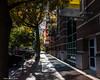 Main Street Sidewalk (that_damn_duck) Tags: sidewalk mainstreet outdoor buildings americana columbiasouthcarolina fall autumn